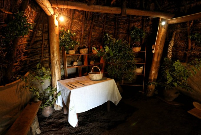 The inside of the Ruka where we learnt about the medicinal uses of herbs and plants by the Mapuche