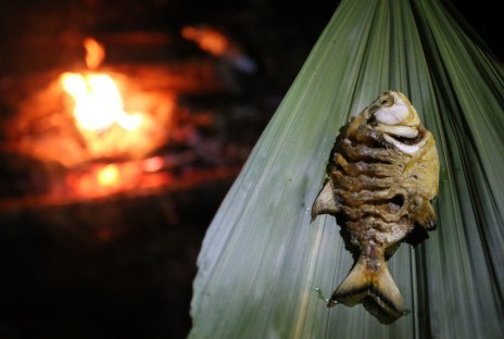Fried piranha with a squeeze of lemon - a real jungle delicacy! Bolivian Amazon Adventure