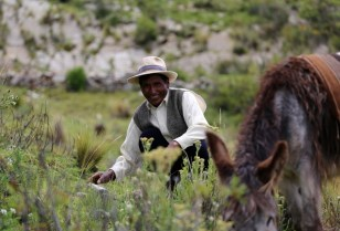 Orlando takes a break from his work, Lake Titicaca