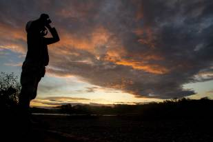 Evening birdwatching in our Peruvian Amazon Tour