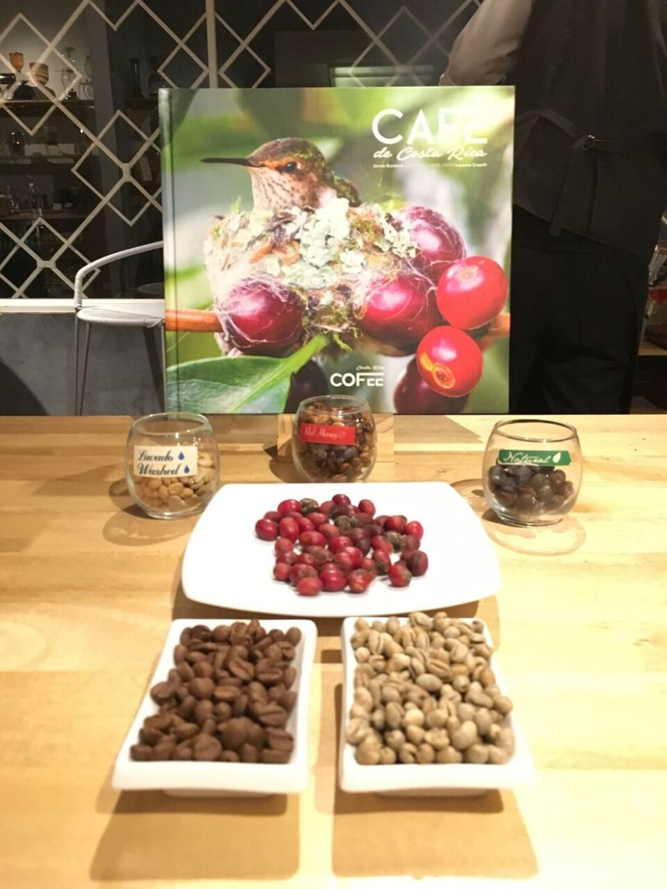 The three coffee processes lavado, honey and natural at Cafeoteca in Costa Rica