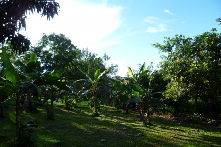 During a walking tour in Juanilama rural community, Costa Rica