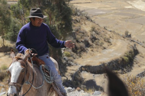 """Chocolate"" on his horse interpreting the cultural landscape around Coporaque"