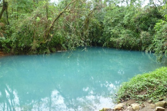 The turquoise river in the middle of the rainforest