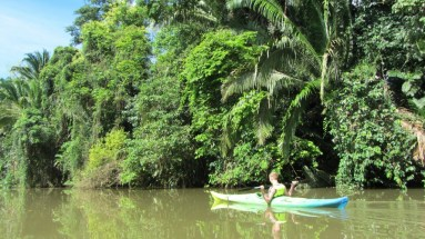 Adventure water sports - Kayaking in Belize through rainforests