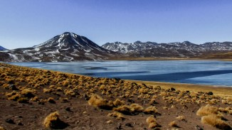 An excursion to the stunning altiplanic lagoons in the Atacama Desert, Chile
