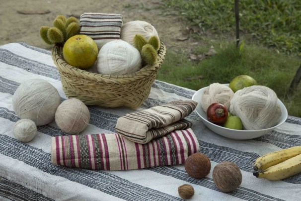 Fruits of the loom. The dyes with which the cotton is treated are naturally obtained from different vegetal sources