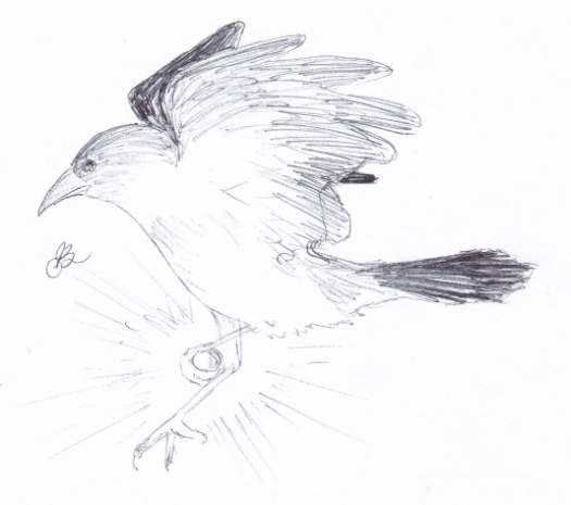 1-14-crowstar