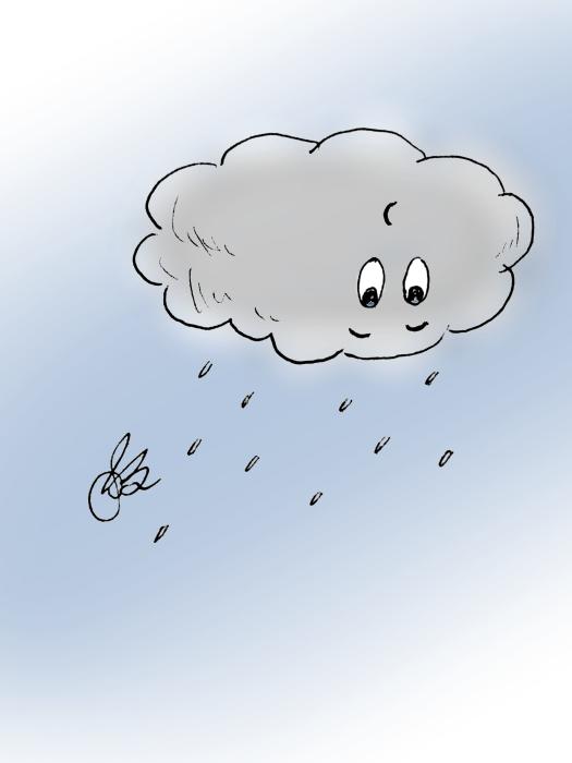 Rain Trainer