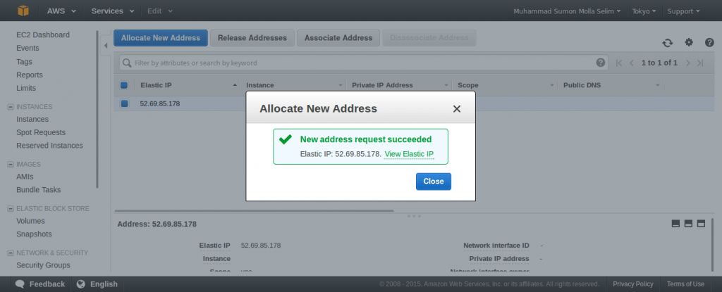 Allocate New Elastic IP