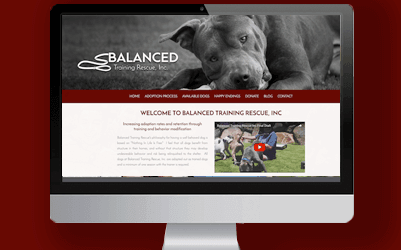 balanced training rescue image