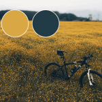 Color inspiration: yellow and gray
