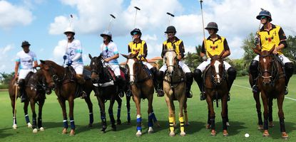The RochePolo team in yellow with Helen Roche on Willow Farm line up for the Ambassador's Cup in Wellington at Santa Clara Polo Club-8 Goal Match.