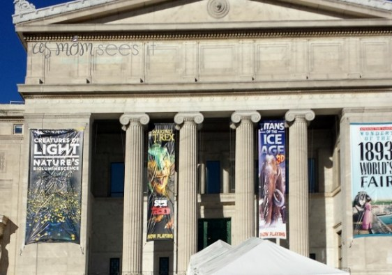 The Field Museum Worlds Fair Exhibit review