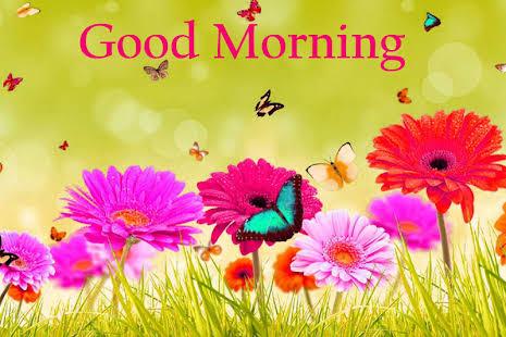 GOOD MORNING MESSAGE #11 – Sunbyanyname