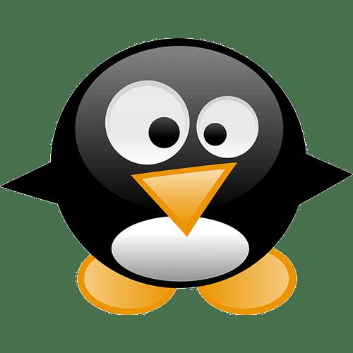 penguin-google-update-core-algorithm-update