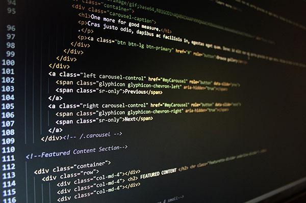 Website Design vs Website Development Sunshine Coast