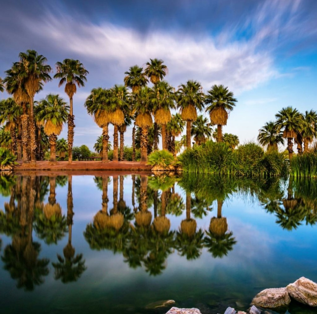 Instagram Phoenix, Arizona: Our Weekly Top 10 - Sun Country View