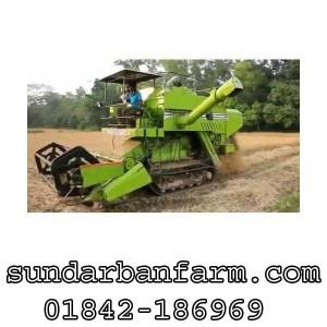 Isher767 Mini Paddy Harvester
