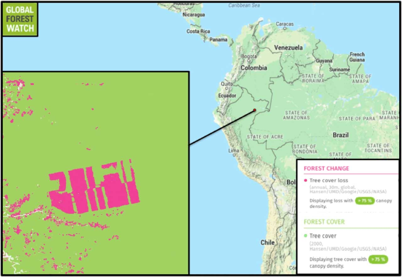 Map Peru – Global Forest Watch