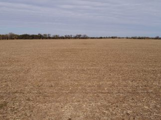 80 Acres Rose Hill Land For Sale