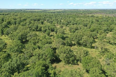40 Acres Chautauqua County Kansas Land For Sale