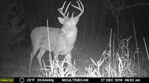 Marion County Hunting Land