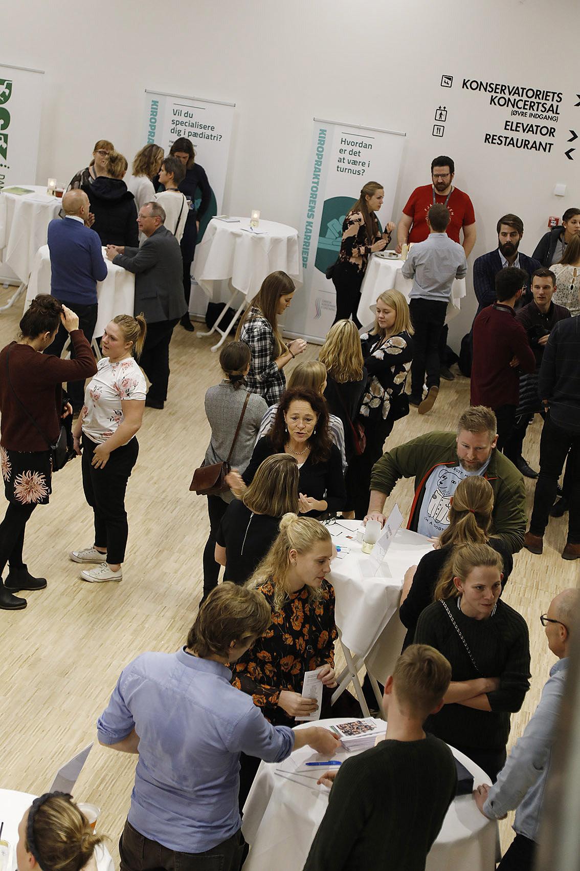 Dansk Kiropraktor Forenings samarbejde med de studerende er vigtigt