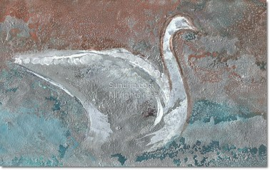 Silver Swan - Available