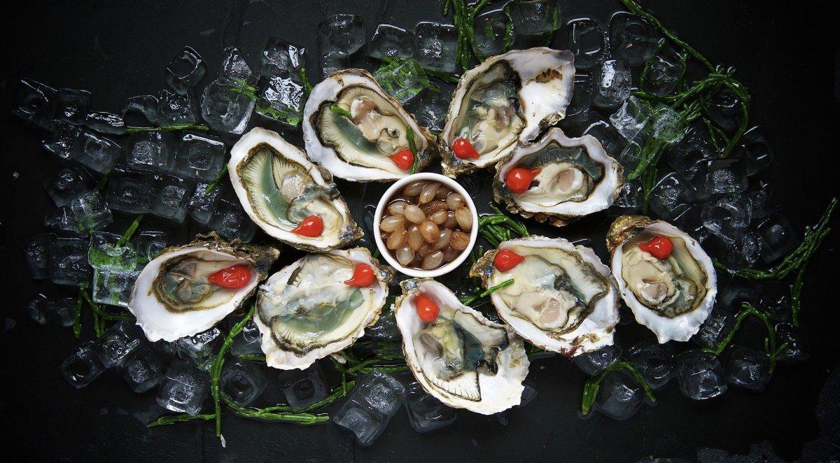 Imagem mostra uma porção de ostras servidas no gelo.