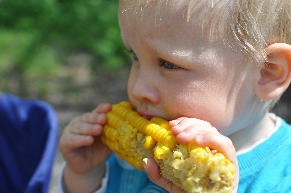 Menino comendo milho.