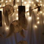 ayahuasca ceremonie rotterdam
