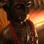 ayahuasca healing