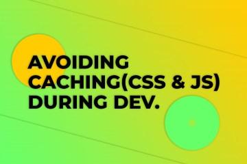Avoiding Caching During Dev.