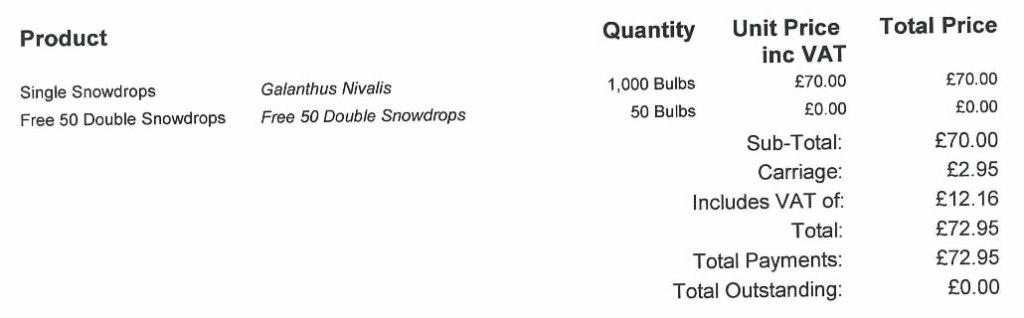 1000 Snowdrops