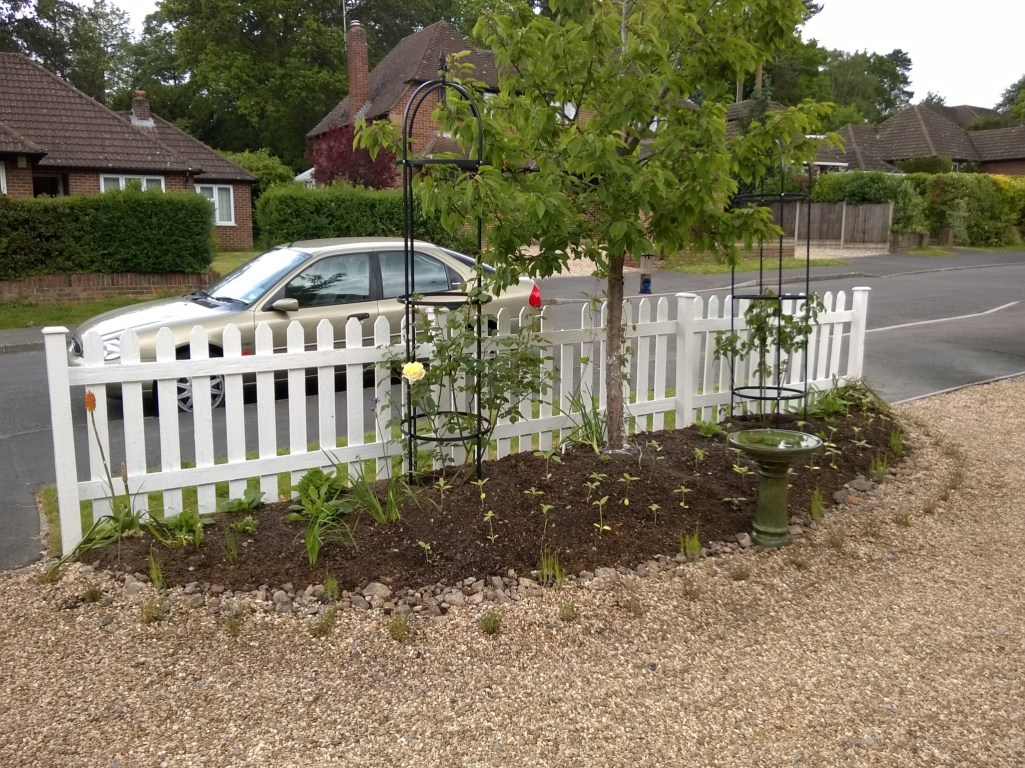 Newly planted front border