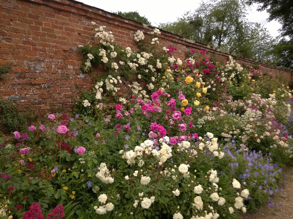 Mottisfont Rose Border