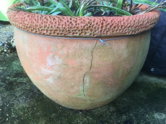Cracked Terracotta Pot