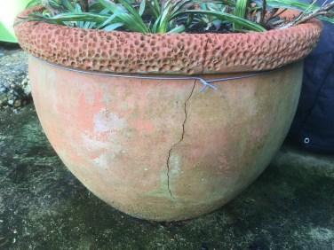 Cracked Terracotta Pot
