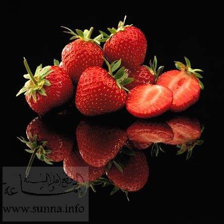 https://i2.wp.com/www.sunna.info/souwar/data/media/46/02h_ERDBEEREN.jpg