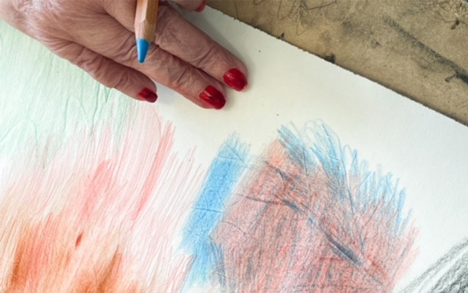 Canberra gets creative in the Drawing Club