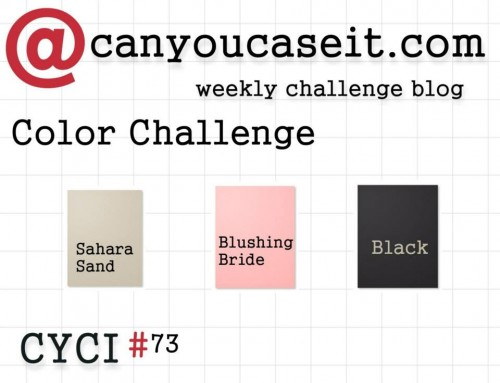 Can You Case It Color Challenge #CYCI #pamstaples