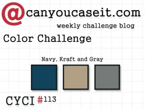 Can You Case It? Color Challenge #113