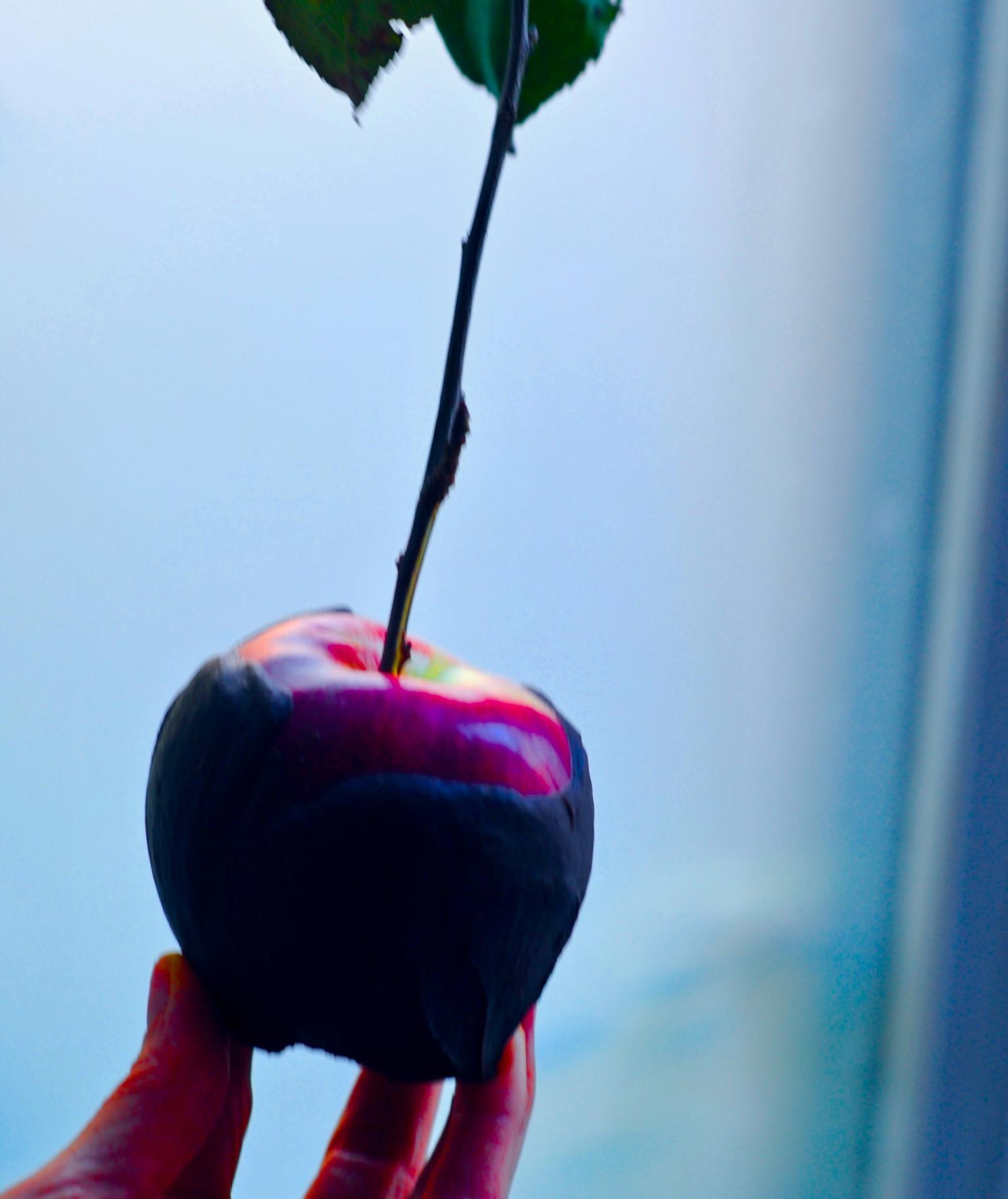 How To Make Chocolate Poison Apples For Halloween, Vegan