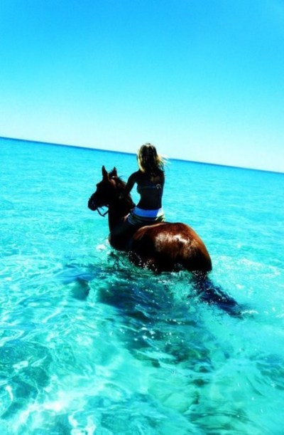 Ocean view horseback riding