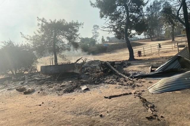 horse sanctuary wildfire