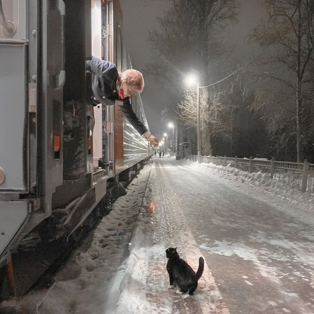 cat moscow train