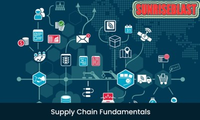 Supply Chain Dynamics Free Online