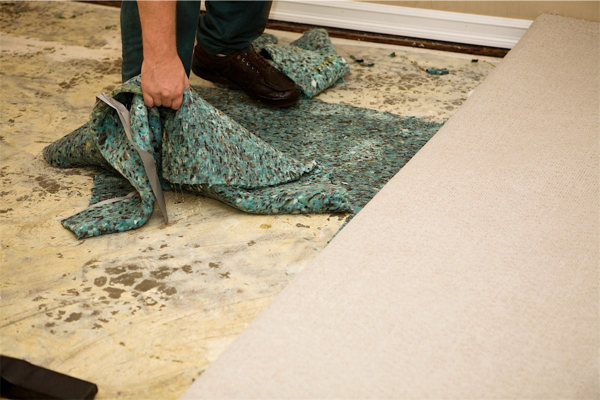 How To Remove Mildew Smell From Wet Carpet Nrtradiant