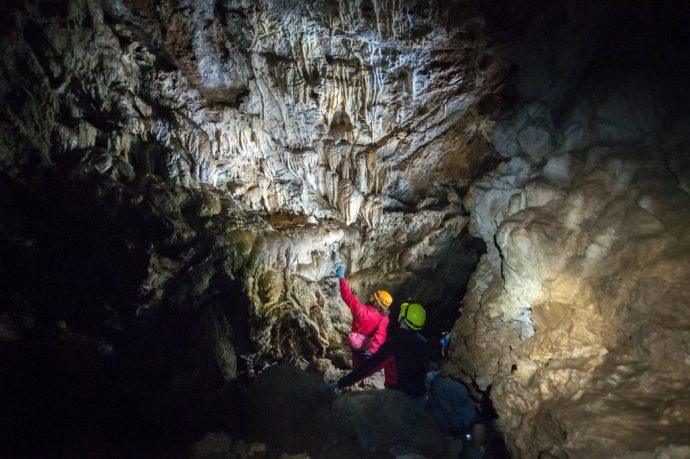 Image Courtesy of Horne Lake Caves